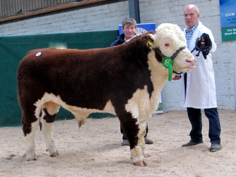 Moyclare Norman from Michael Molloy pictured with purchaser at €3,600 Gordon Burleigh
