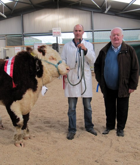 14 1st Prizewinner & Winner Senior Male Championship RedRock Buster with Tony Hartnett and John Neenan President IHBS