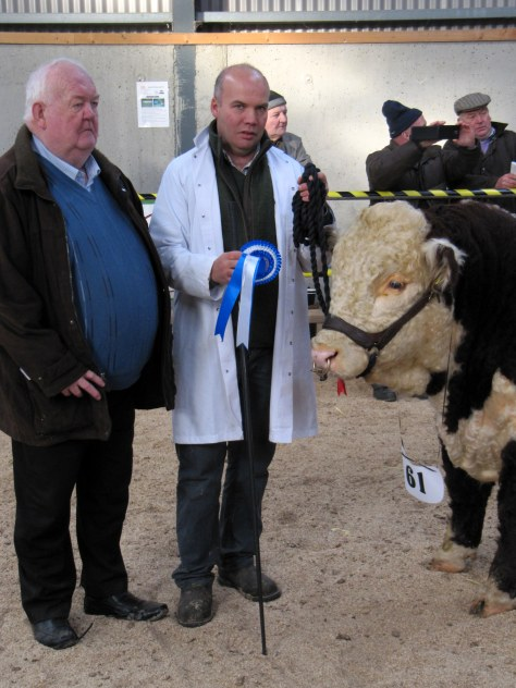 15 1st Prizewinner & Reserve Senior Male Moyclare Nevis with John Neenan President IHBS and owner Michael Molloy