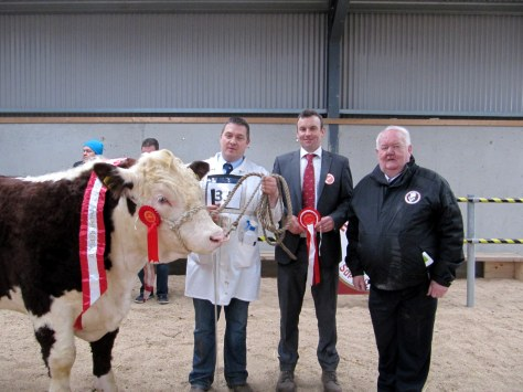 Champion Glaslough Pacesetter with owner Nigel Heatrick, Judge Tony Bradstock, UK and Society President John Neenan