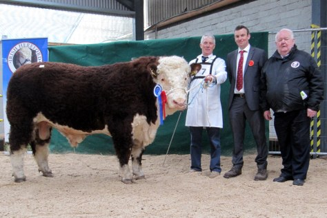 Reserve Champion Castledalypoll 1 Michael with owner Michael Farrell, Judge Tony Bradstock, UK and Society President John Neenan