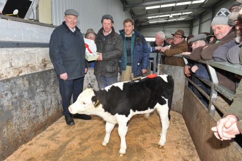 First prize-winning Hereford Cross bull calf Owned by Corrine Pender. Pictured Henry Parr, South Leinster Branch IHBS, Owner, James Thompson South Leinster Branch IHBS.Sold at €450