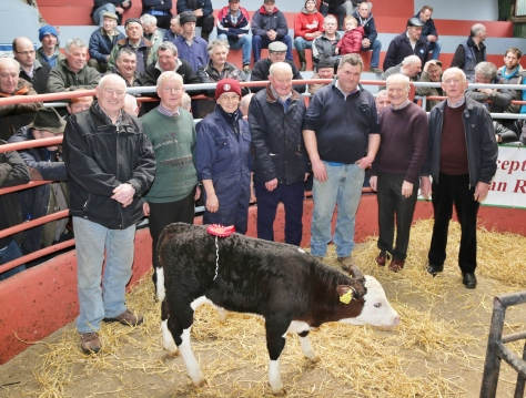 Martin Vaughan, Freemount, who won First Prize for his Hereford Bull Calf at the Kanturk Mart Hereford Calf Promotion and information day, pictured with Neilus Moynihan and Dermot McCarthy of the Hereford Society, Lesley Sandes (Field Officer Hereford Society), John Ludgate (Munster Treasurer), John Cott (Chairman Kanturk Mart), and Tim Broderick (Judge). The Calf sold for €435. Photo by Sheila Fitzgerald.