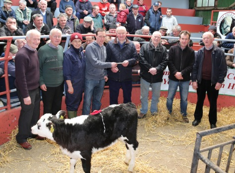 Dan Scully, Mallow, who won First Prize for his Hereford Heifer Calf at the Kanturk Mart Hereford Calf Promotion and information day, pictured with Neilus Moynihan and Dermot McCarthy of the Hereford Society, Lesley Sandes (Field Officer Hereford Society), John Ludgate (Munster Treasurer), John Cott (Chairman Kanturk Mart), Joe Noonan (Vice Chair), and Tim Broderick (Judge). The Calf sold for €400. Photo by Sheila Fitzgerald.