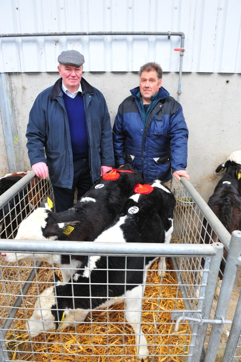 Judges Henry Parr, Clogh, Castlecomer and Jimmy Thompson, Ballyraggan, Rathvilly both South Leinster Branch IHBS reps.