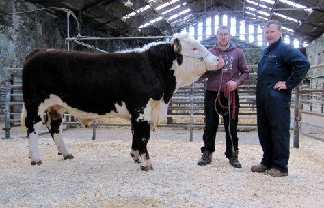 Clyda Cuchulain with purchaser John O'Sullivan, Cobh and breeder John Cronin, Mourneabbey. €3,000