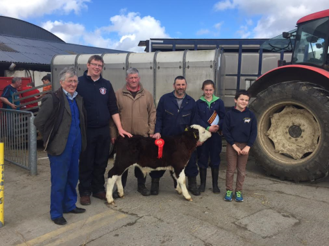 In attendance in Bull Picture is William Wallace, Mervyn Parr and John Jones, South Leinster IHBS with Jim Bergin (Owner)and daughter with A N Other. Sold at €450.