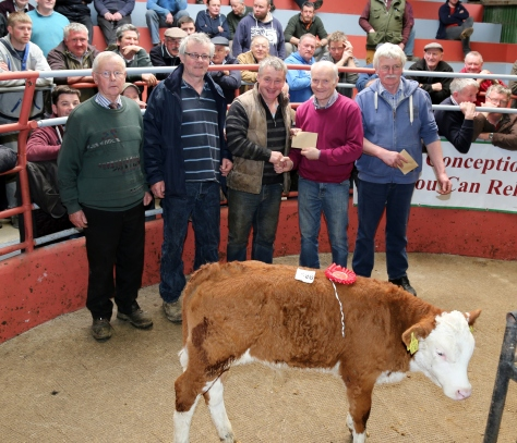 Derry O' Hanlon, Bweeng, who won First Prize for his Hereford Bull Calf at the Kanturk Mart Hereford Calf Promotion,  pictured with Liam Philpott and John Joe O' Reilly of the Hereford Society, John Cott (Chairman Kanturk Mart), and Tim Broderick (Judge). The Calf was sold for €425. Photo by Sheila Fitzgerald
