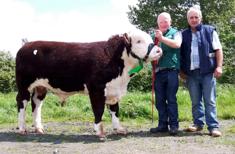 Kye Hotspur 708 with owner Padraig McGrath and purchaser Michael Conroy. €4,300