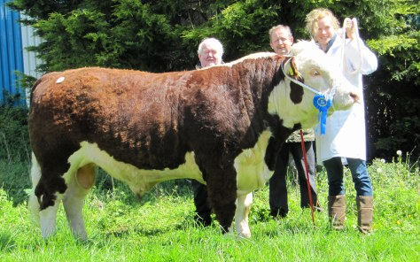 Millbawn Atticus with breeder Sandra Bogan with Society President John Neenan and Tom Brennan, Judge