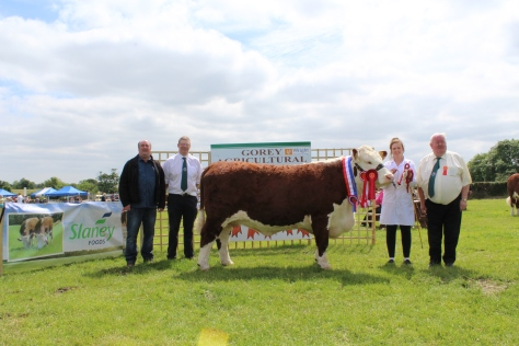 1 Champion and Winner Senior Cow, Knockduff Poll 1 Daisy with Eamonn Moulds Sponsors Slaney Foods Int., Mervyn Parr South Leinster IHBS, Ms Jones and John Neenan, Judge