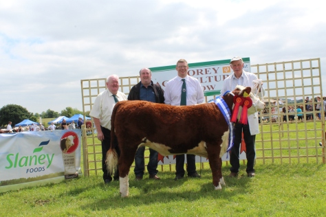 2 Reserve Champion & Junior Female Champ Knockmountagh Willow with John Neenan, Judge, Eamonn Moulds Sponsors Slaney Foods Int., Mervyn Parr, IHBS and Eamon McKiernan