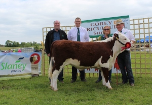 Winner Oct heifer class Kye Holly 726, Eamonn Moulds, Sponsors Slaney Foods Int., Mervyn Parr, IHBS with Catherine & Padraig McGrath.
