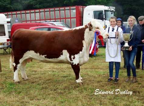 Supreme Hereford Champion Corlismorepoll 1 Sydney 607 with Ciara McNamara (exhibitor) and Mags Melody (judge)