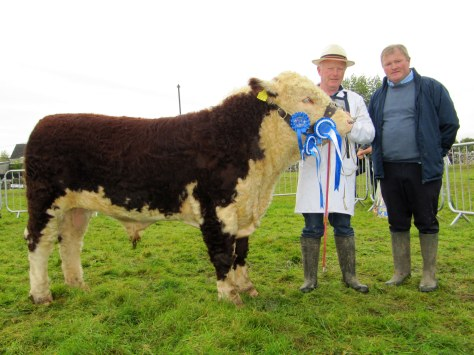 Reserve Supreme Champion  Kye Harry 721 with Owner Padraig McGrath and Show/Fair Chairman Dermot Kelly