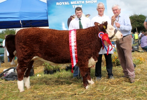 Champion Heifer calf Castledaly Lucy with Hugh P Murray, owner Michael Farrell and sponsor Val Ledwith