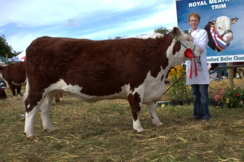 Winner cow class Lakelodge Kathy with Edward Dudley