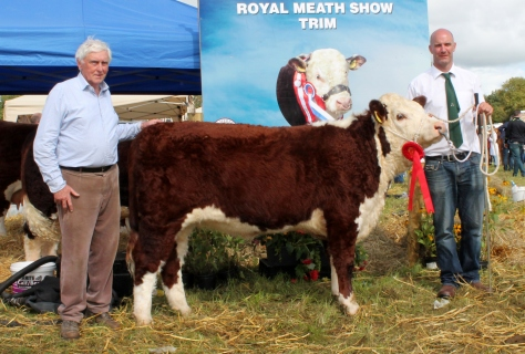 Winner Nov onward heifer calf class Riverock Naughty Bea with Tony Hartnett