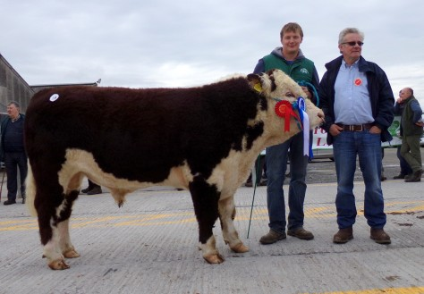 Reserve Champion Ballyaville  Imprint with owner Ivor Deverell and show judge Liam Philpott - €3,200