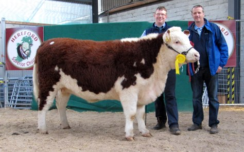 Tourtanepoll 1 Red Flame 20 - €2,950 pictured with Mervyn Parr and purchaser Derek McGrath