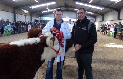Winner Jan - Feb born heifer Corlismore Betty 843 with Garry McKiernan and Bruce of Austrex Cattle Exporters