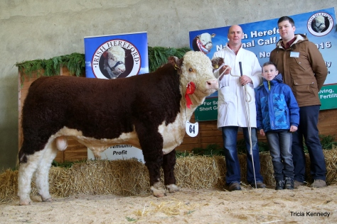 Winner Sep-Oct'15 Bull Riverrock Goldstar with owner Tony Hartnett, assistant Gerry O'Riordan and Denis Brennan, sponsors Slaney Foods International