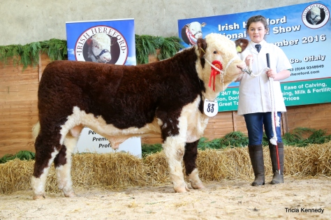 Winner Jan-Feb born bull Shiloh Farm Dynamite with Sarah Murray