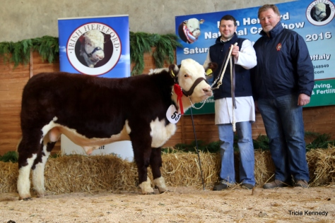 Winner commercial Hereford cross calf born in 2016 with owner Hugh P Murray and Lester Roe of sponsors Irish Hereford Prime