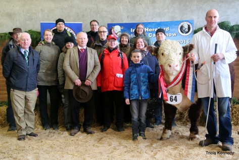 Judge Young Handlers- John Kemp, Cattle Judge Richard Mann pictured with part of the large Finnish Hereford group at the show as part of their tour of Irish Hereford Herds