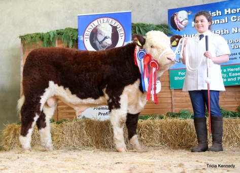 Junior Male and Reserve Supreme Male Champion Shiloh Farm Dynamite with Sarah Murray