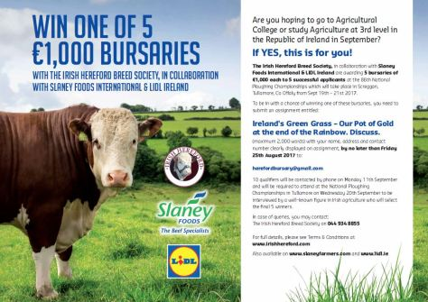 Irish Hereford Bursary Competition 2017
