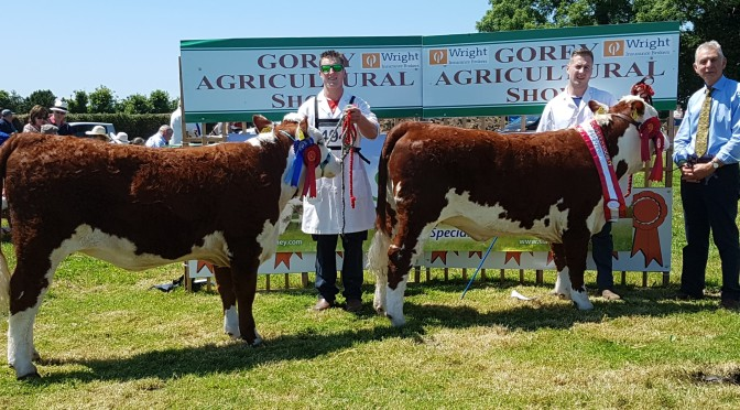 Gorey Agricultural Show