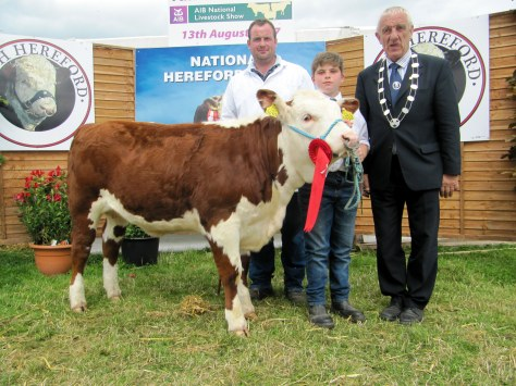 100 Champion Heifer Calf Coisceim Poll 1 Jewel with owner Timmy Breen, John Angland and IHBS President Pat McCarthy
