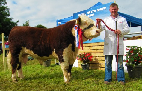 1 Supreme Champion Hereford Shiloh Farm Dynamite with Garry McKiernan