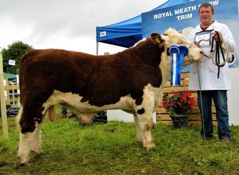 6 Reserve Junior Bull Calf Champion Glaslough Sid 208 with Nigel Heatrick