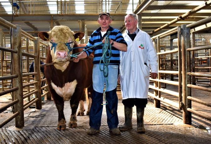 2nd Kilkenny Multi-Breed Show & Sale