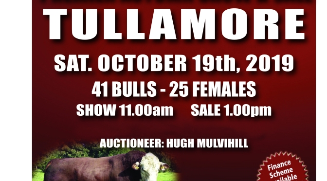 Premier Autumn Show & Sale in Tullamore with a helping hand!