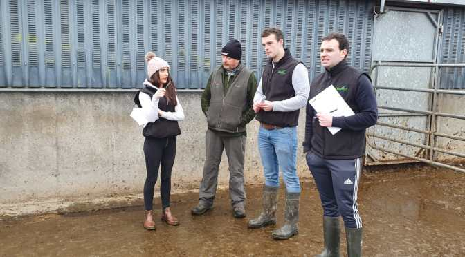 Young Handlers Stock Judging in Kilkenny ahead of New Zealand competition.