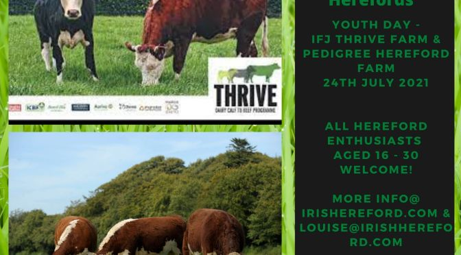 Next Gen Herefords Youth day – July 2021